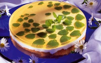 Joghurt-Melissen-Torte