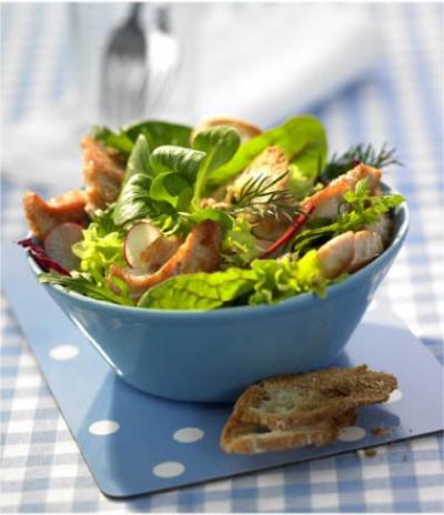 Bunter Puten-Kräuter-Salat