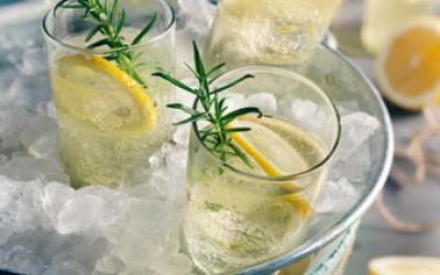 Gin Fizz mit Rosmarin